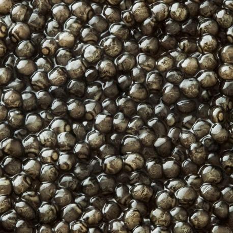 Caviar Béluga Impérial