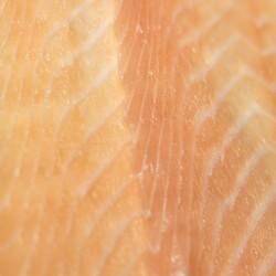 Saumon Fumé sauvage - Mer Baltique