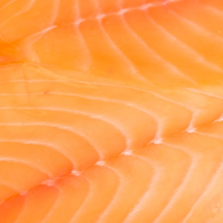 Farmed norwegian smoked salmon