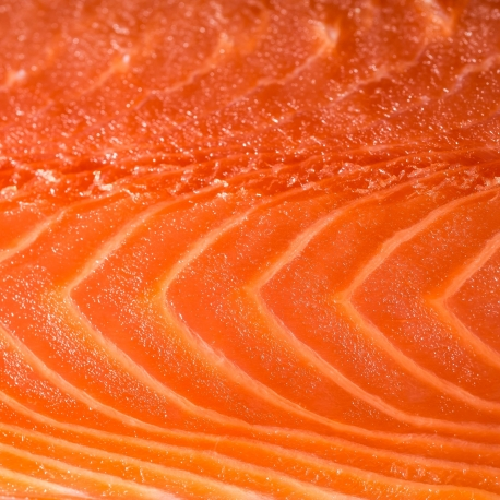 Farmed scottish smoked salmon