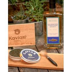 Caviar / seafood et spiritueux